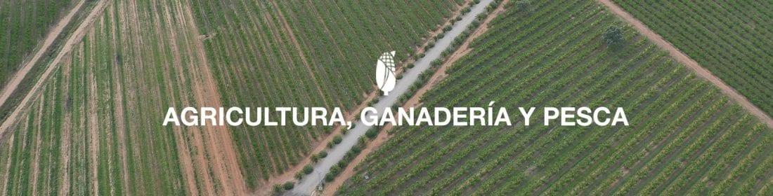 Servicio Agricultura con drones