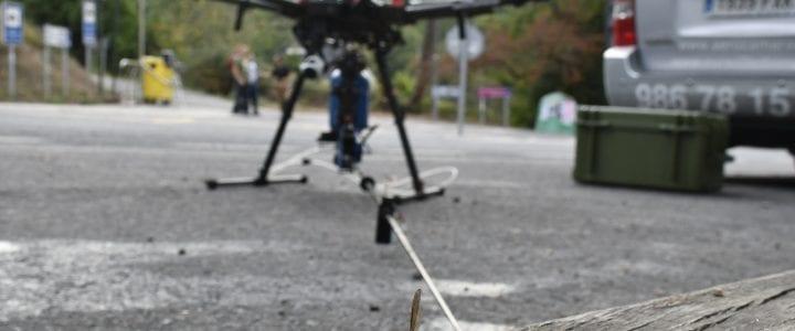 El drone velutina en el aire