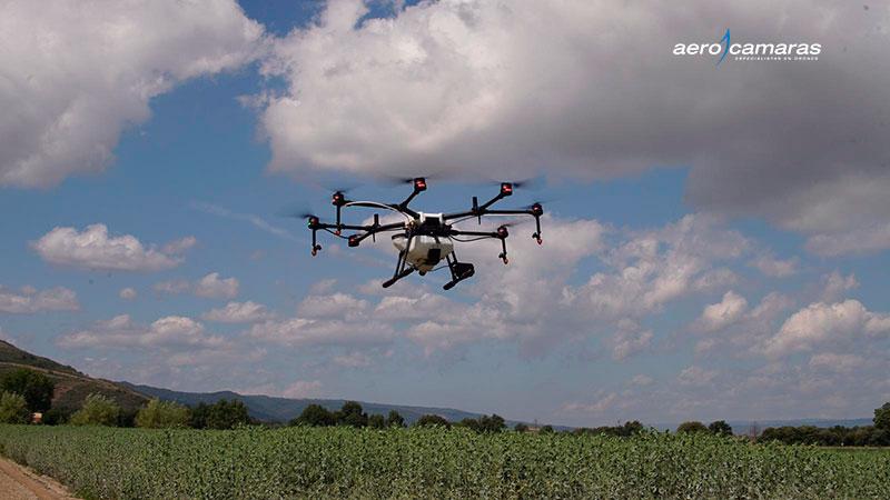 drones-fumigar