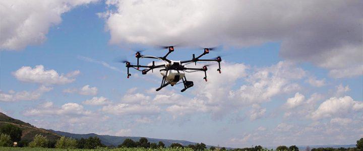 Drones para plantar árboles y semillas